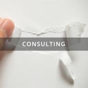 Dr Gemma Calvert Consulting